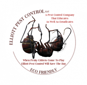 Elliott Pest Control Of Rangeley Maine