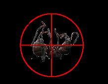 Farmington Maine Pest Control